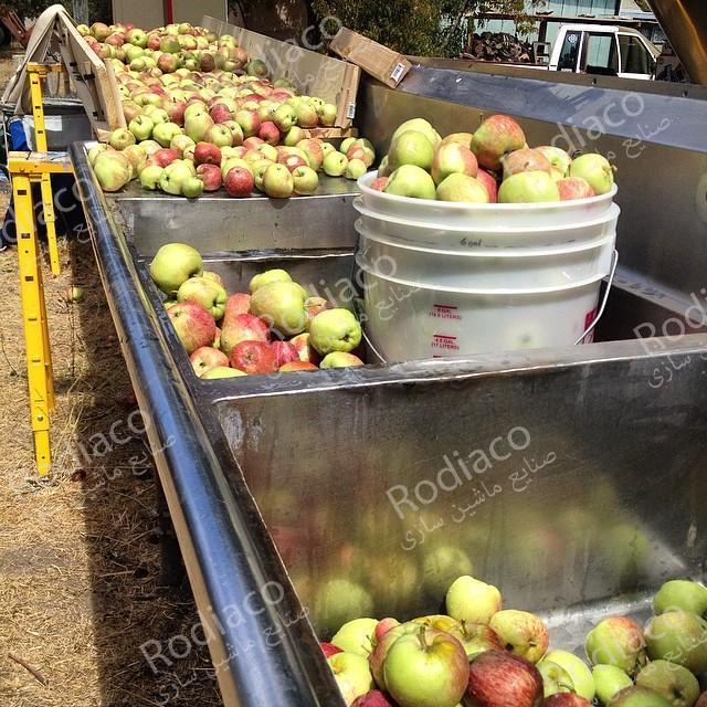 سفارش خرید دستگاه سورتینگ سیب درختی