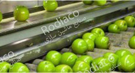 دستگاه سورتینگ سیب
