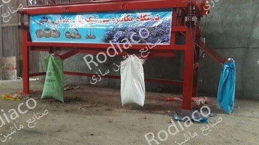 قیمت دستگاه سورتینگ پیاز زعفران