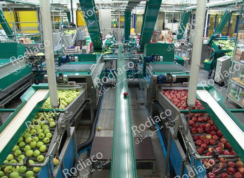 دستگاه سورتینگ میوه سیب درختی