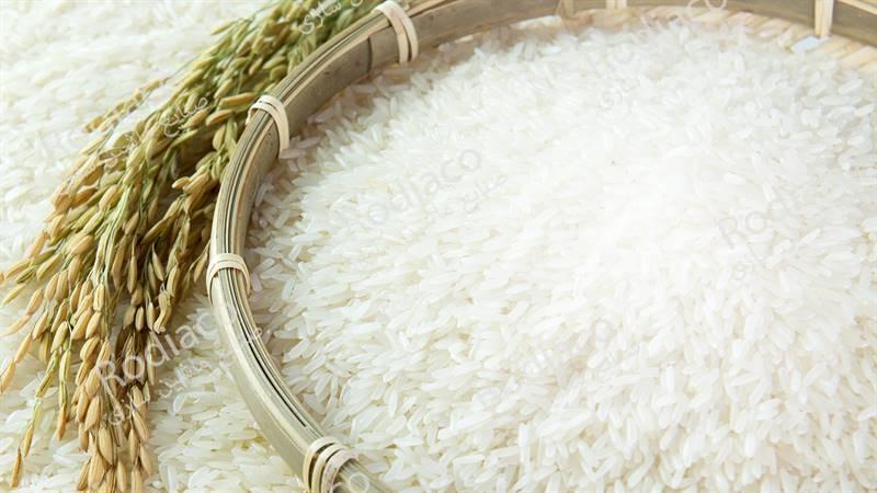 سورتینگ برنج جهت مشاغل خانگی
