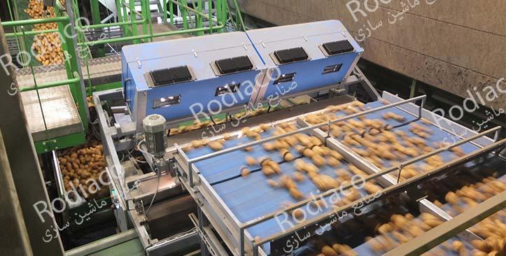 دستگاه های سورتینگ سیب زمینی