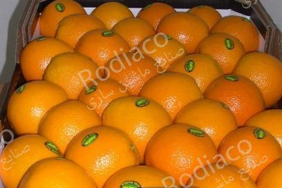 پرتقال سورت شده