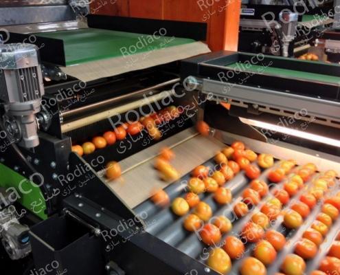 دستگاه سورتینگ میوه پرتقال