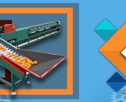 شرکت سازنده دستگاه سورتینگ میوه پرتقال